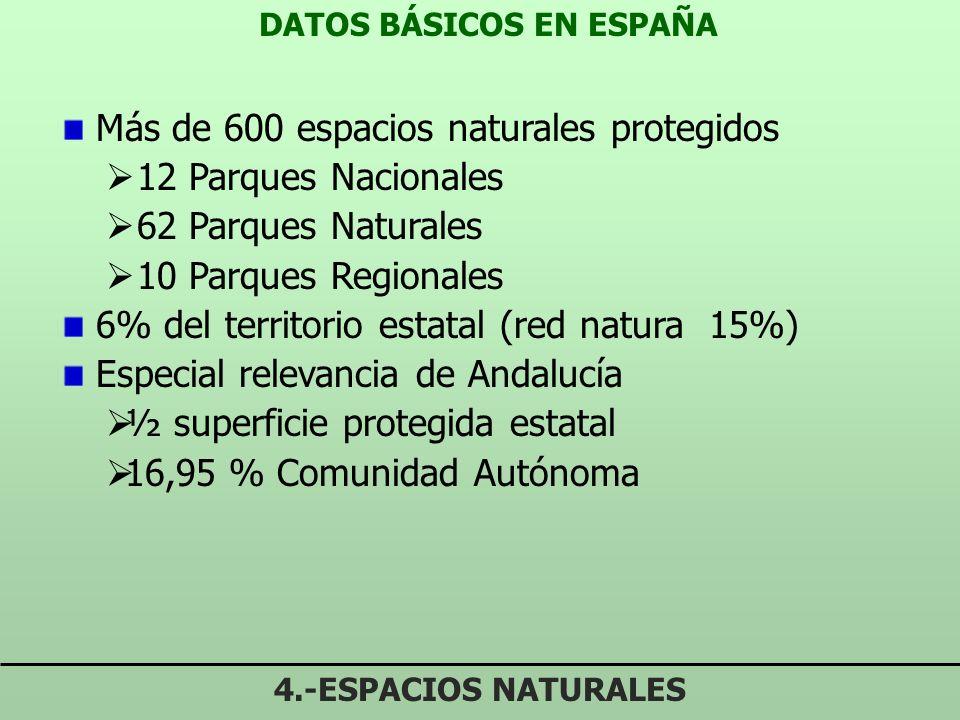 DATOS BÁSICOS EN ESPAÑA
