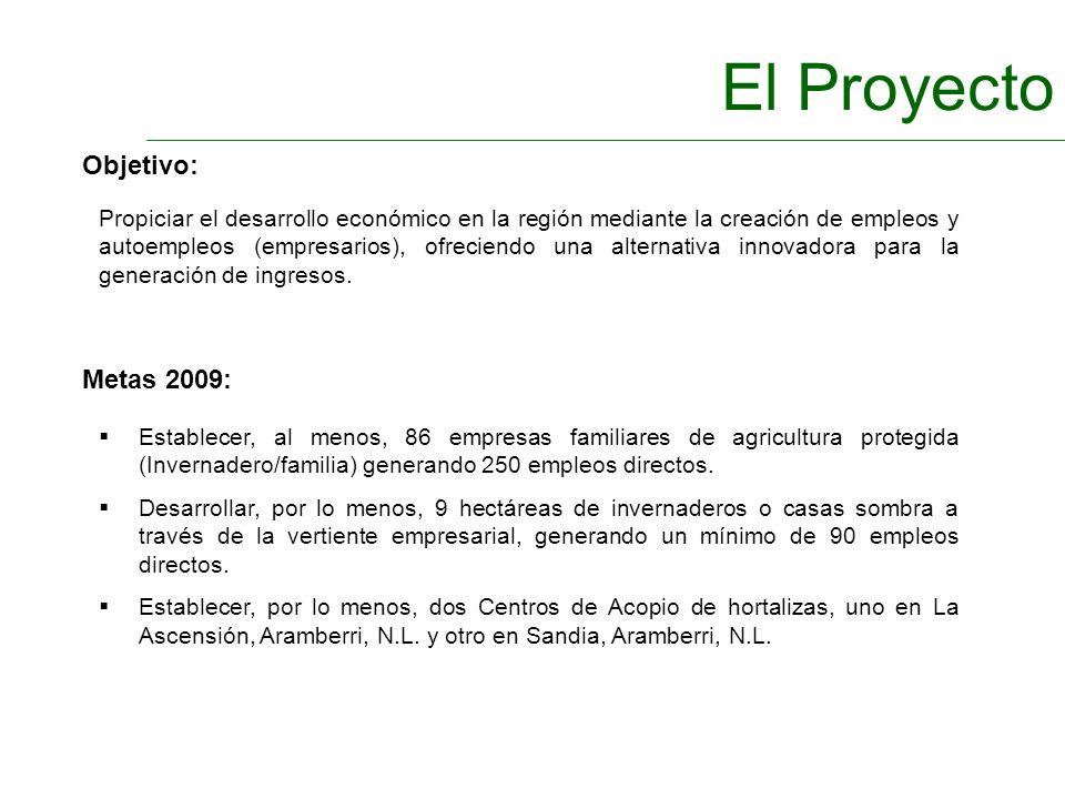 El Proyecto Objetivo: Metas 2009: