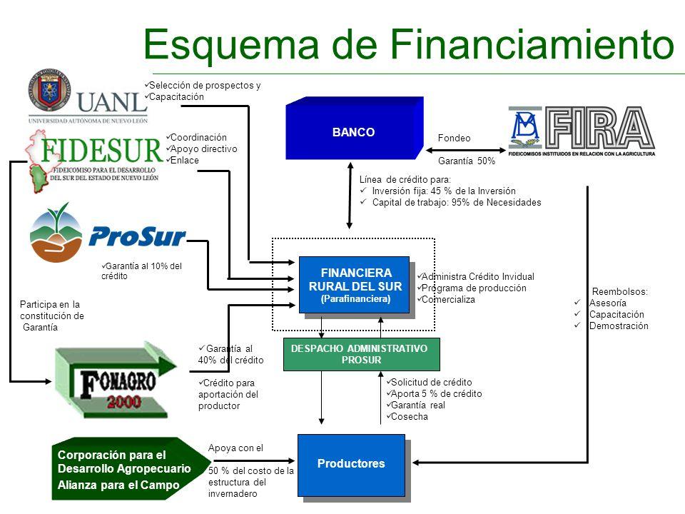 Esquema de Financiamiento