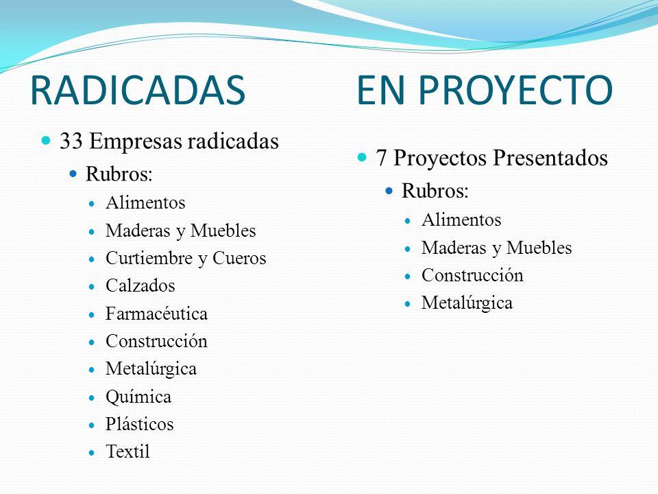 RADICADAS EN PROYECTO 33 Empresas radicadas 7 Proyectos Presentados