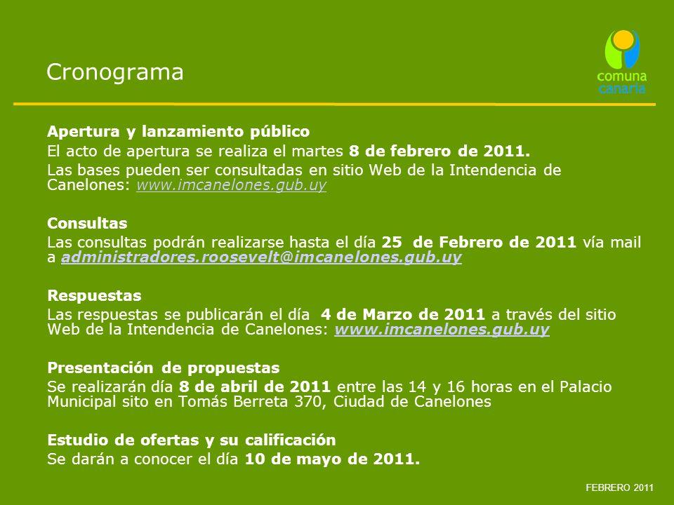 Cronograma Apertura y lanzamiento público