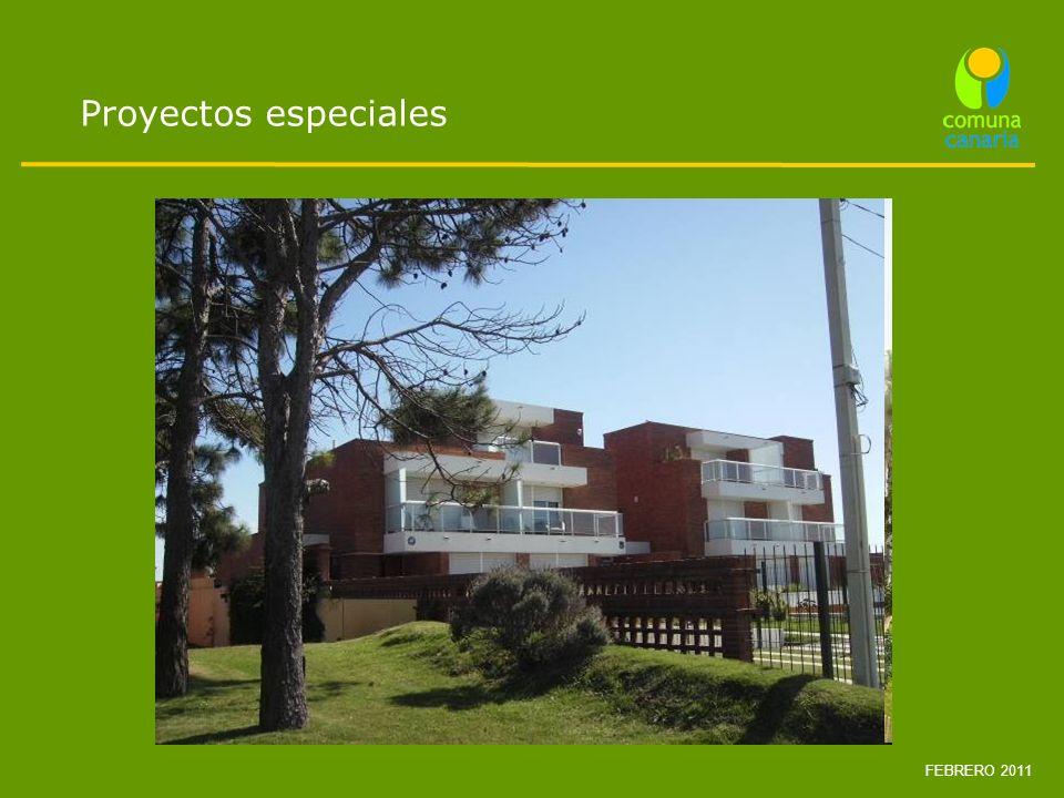 Proyectos especiales FEBRERO 2011