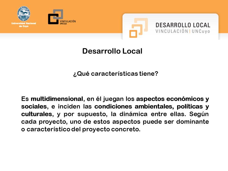 Desarrollo Local ¿Qué características tiene