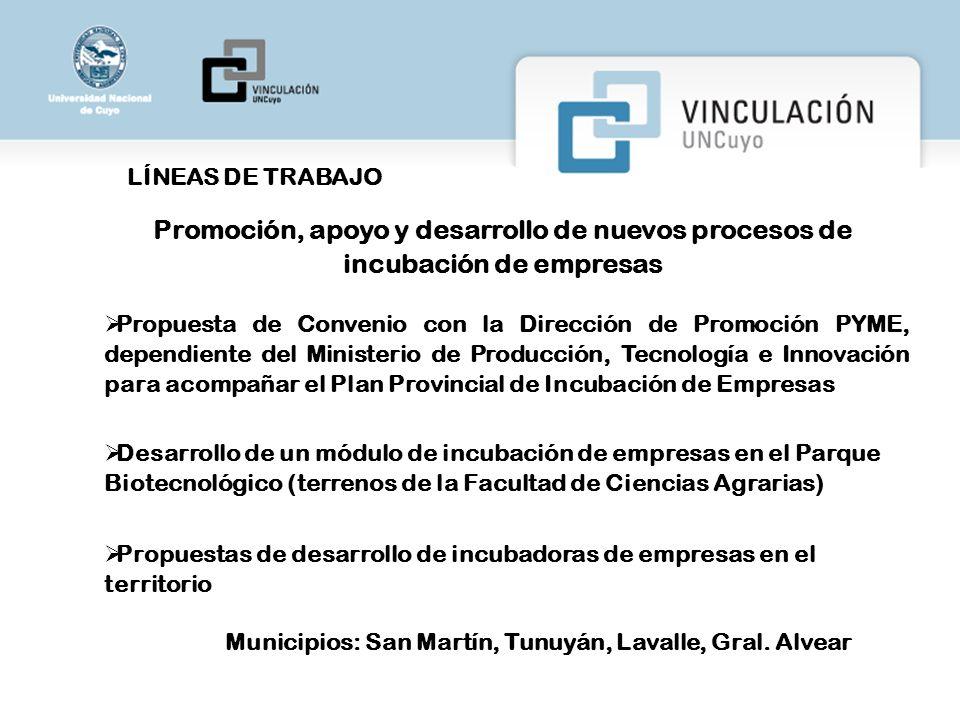 LÍNEAS DE TRABAJO Promoción, apoyo y desarrollo de nuevos procesos de incubación de empresas.