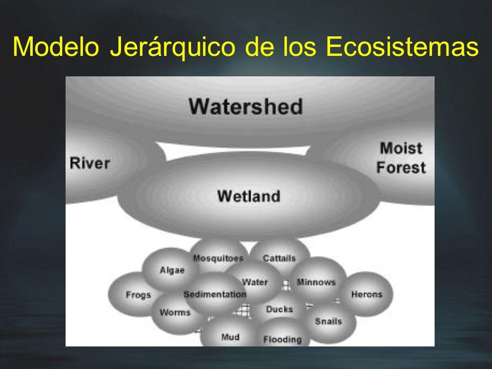 Modelo Jerárquico de los Ecosistemas