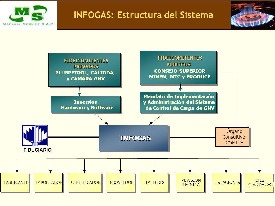 INFOGAS: Estructura del Sistema