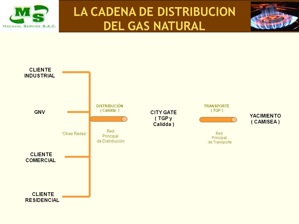 LA CADENA DE DISTRIBUCION DEL GAS NATURAL