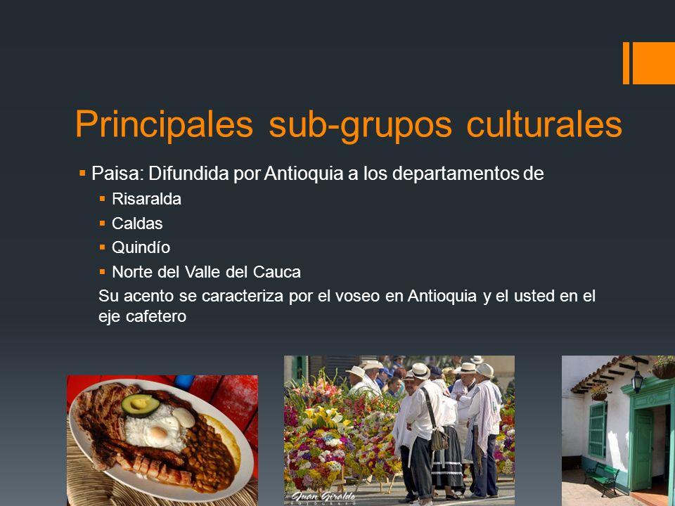 Principales sub-grupos culturales