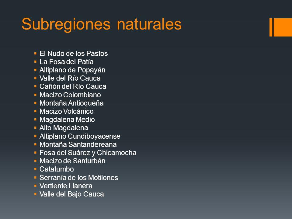 Subregiones naturales