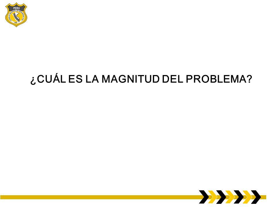 ¿CUÁL ES LA MAGNITUD DEL PROBLEMA