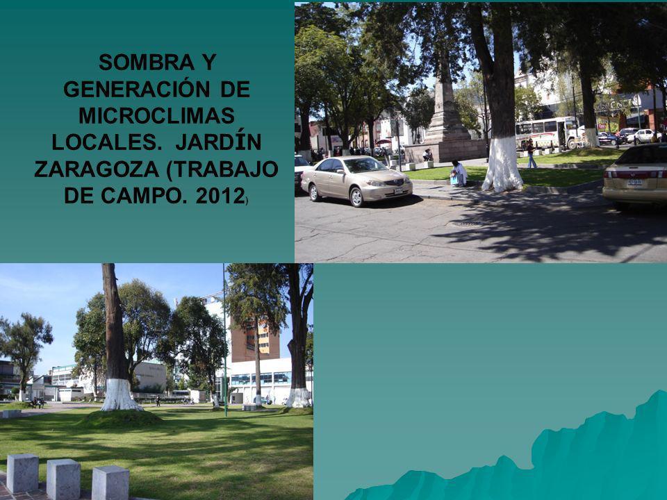 SOMBRA Y GENERACIÓN DE MICROCLIMAS LOCALES