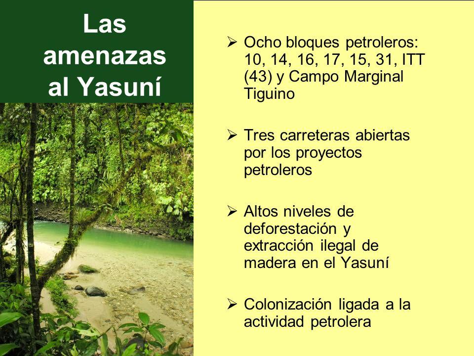 Las amenazas al YasuníOcho bloques petroleros: 10, 14, 16, 17, 15, 31, ITT (43) y Campo Marginal Tiguino.