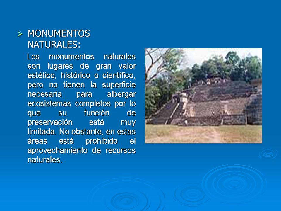MONUMENTOS NATURALES: