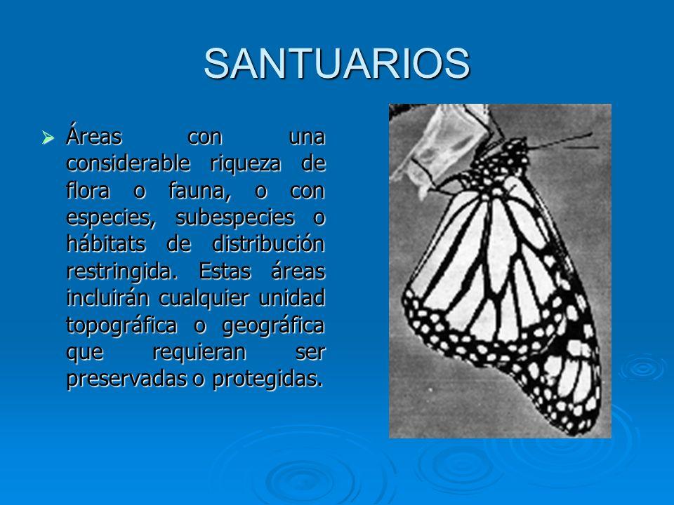 SANTUARIOS