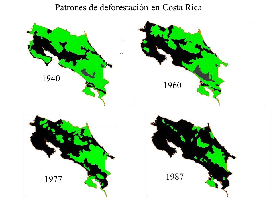 Patrones de deforestación en Costa Rica