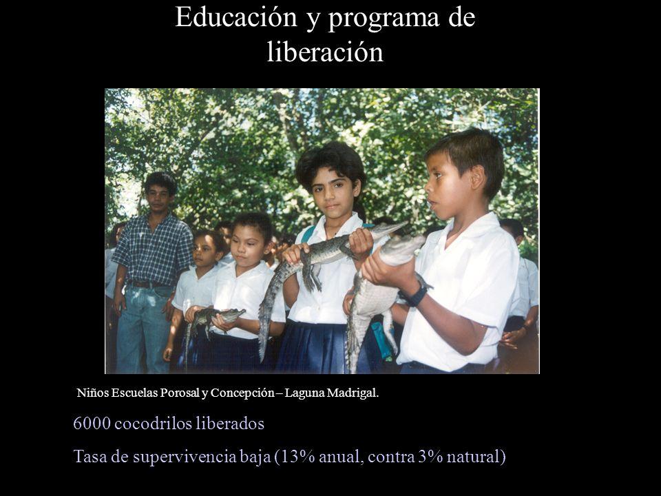 Educación y programa de liberación