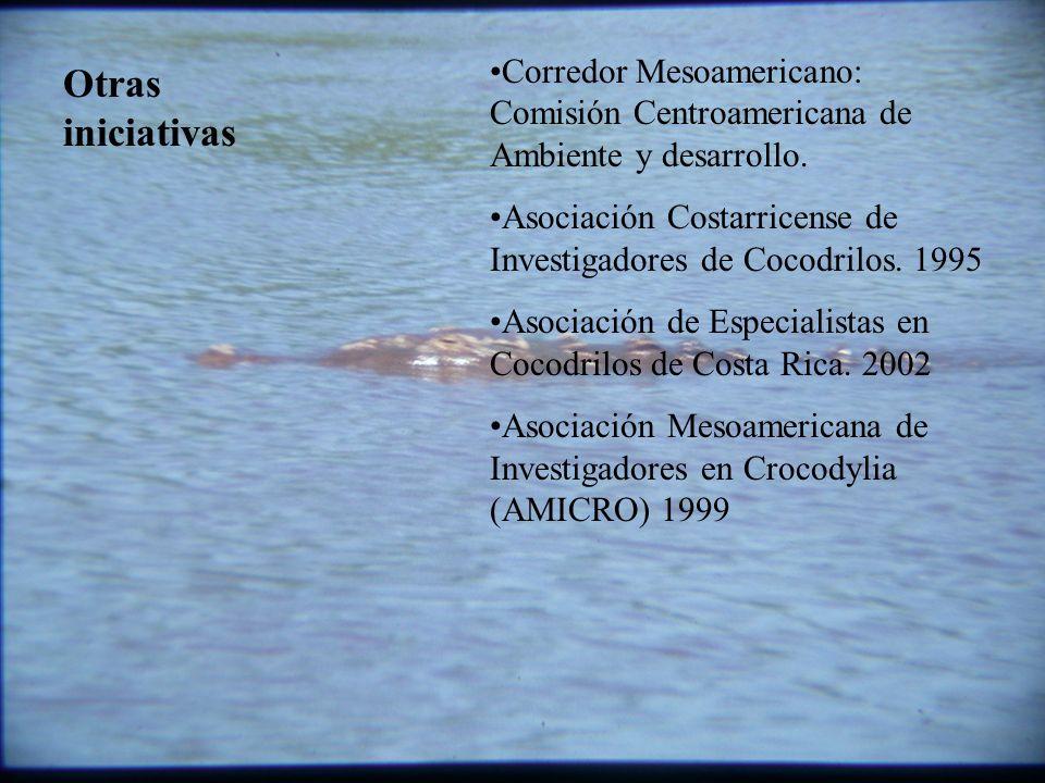 Corredor Mesoamericano: Comisión Centroamericana de Ambiente y desarrollo.
