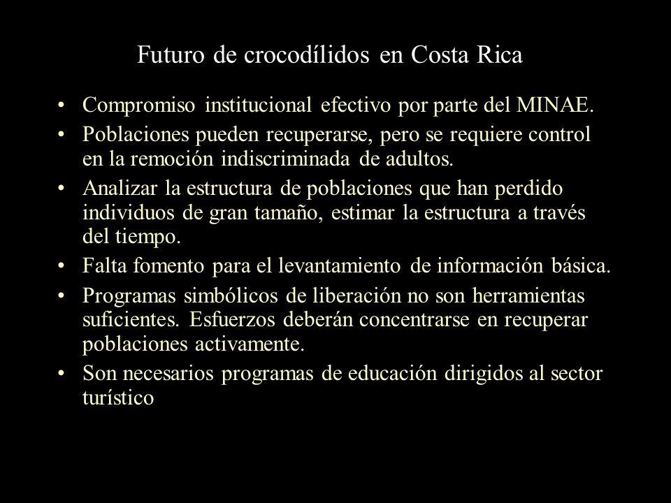 Futuro de crocodílidos en Costa Rica