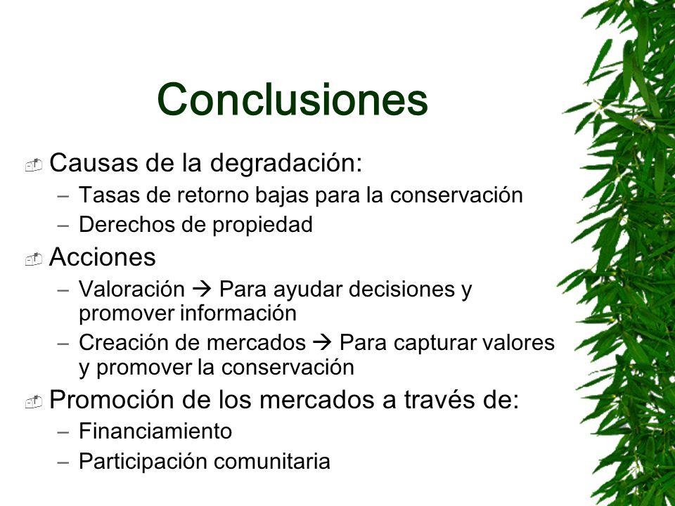Conclusiones Causas de la degradación: Acciones