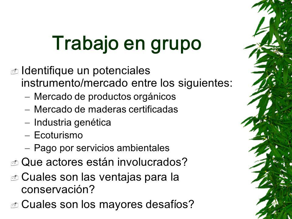 Trabajo en grupo Identifique un potenciales instrumento/mercado entre los siguientes: Mercado de productos orgánicos.