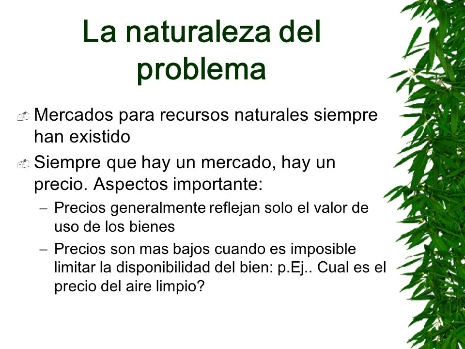 La naturaleza del problema