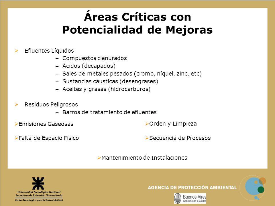 Áreas Críticas con Potencialidad de Mejoras