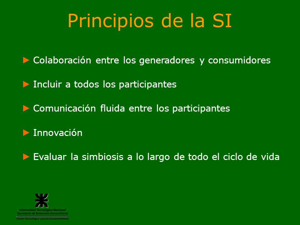 Principios de la SI Colaboración entre los generadores y consumidores