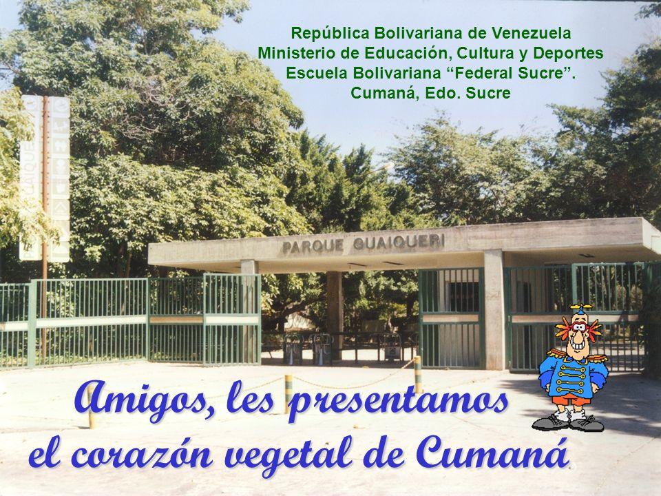 Amigos, les presentamos el corazón vegetal de Cumaná