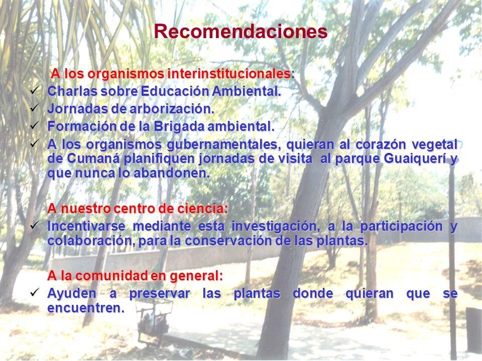 Recomendaciones A los organismos interinstitucionales: