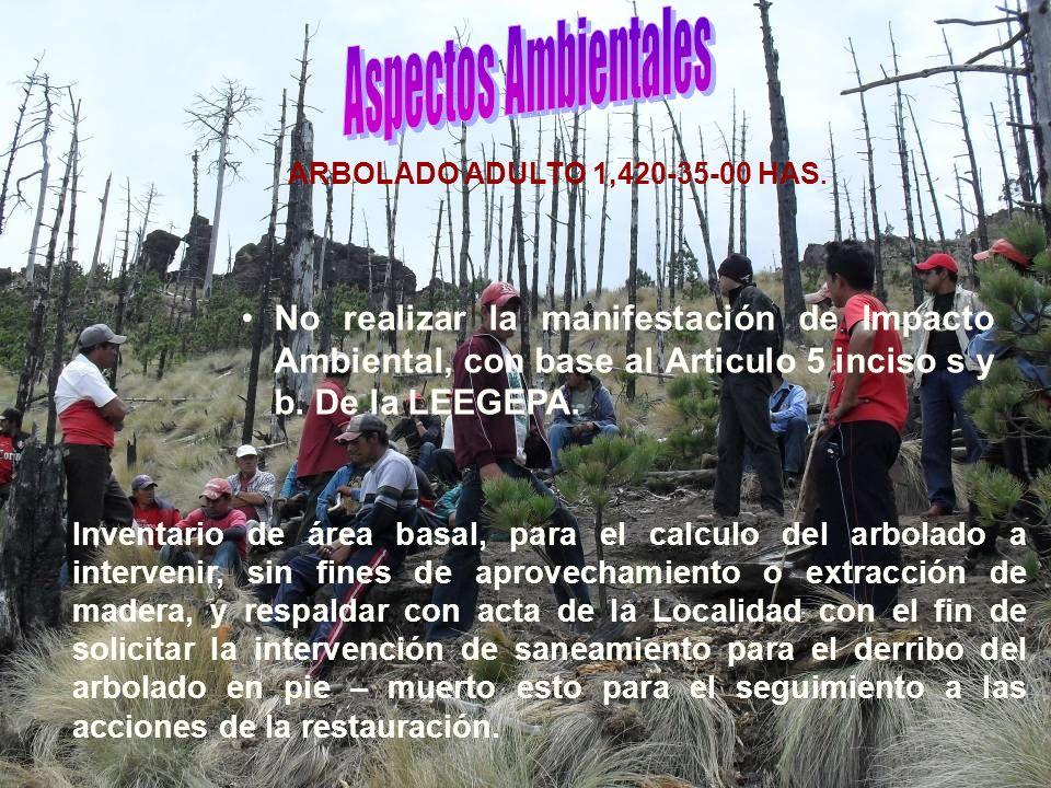 Aspectos Ambientales ARBOLADO ADULTO 1,420-35-00 HAS.