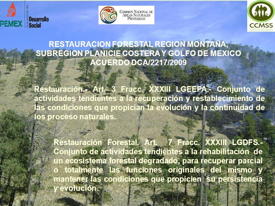 RESTAURACION FORESTAL REGION MONTAÑA,
