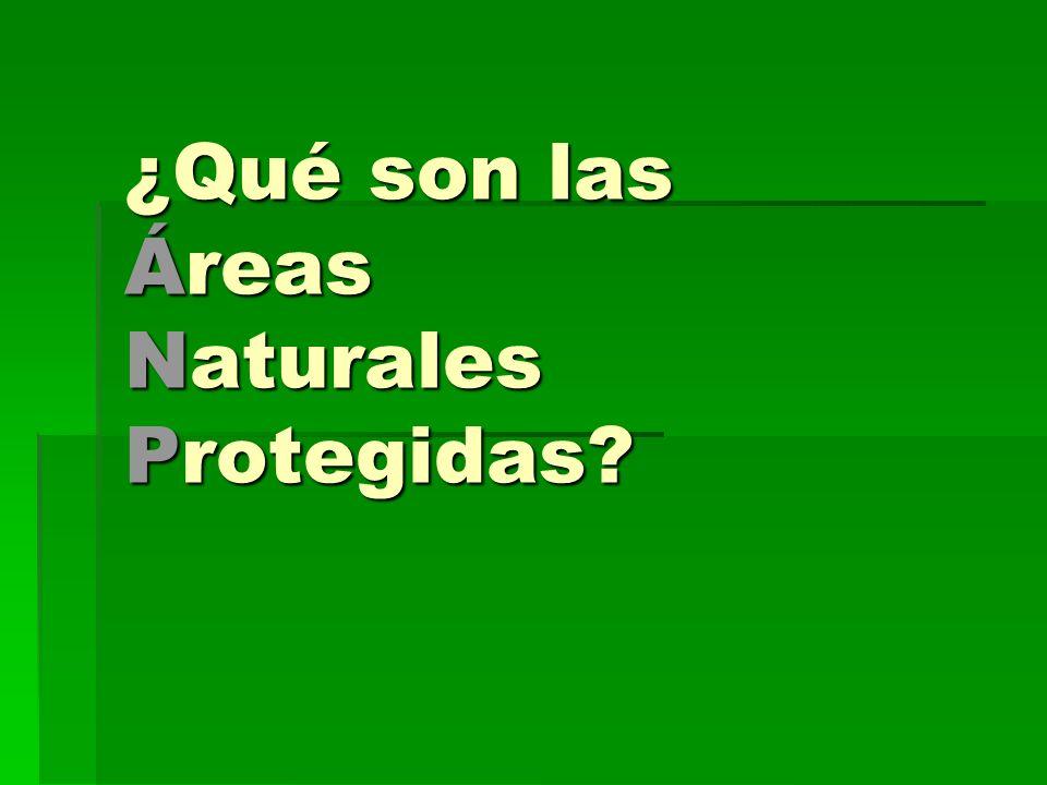 ¿Qué son las Áreas Naturales Protegidas
