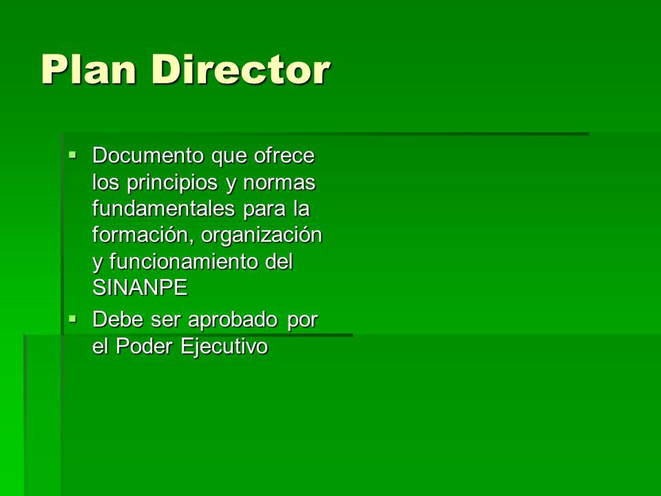 Plan Director Documento que ofrece los principios y normas fundamentales para la formación, organización y funcionamiento del SINANPE.