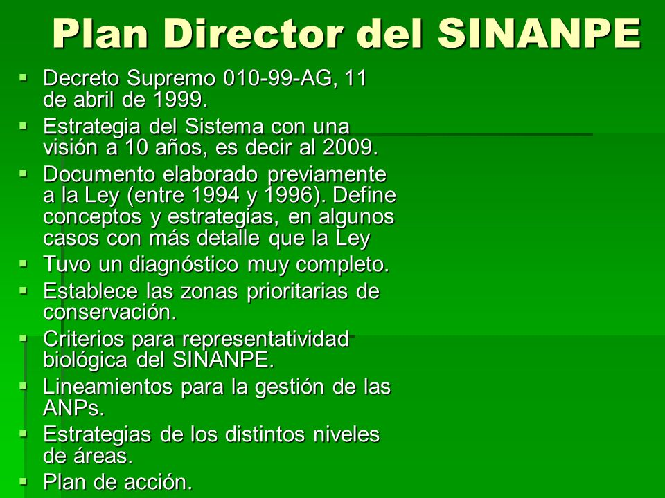 Plan Director del SINANPE