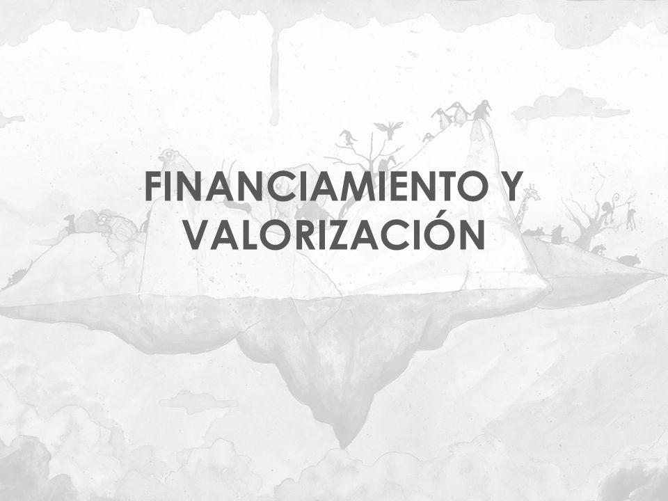FINANCIAMIENTO Y VALORIZACIÓN