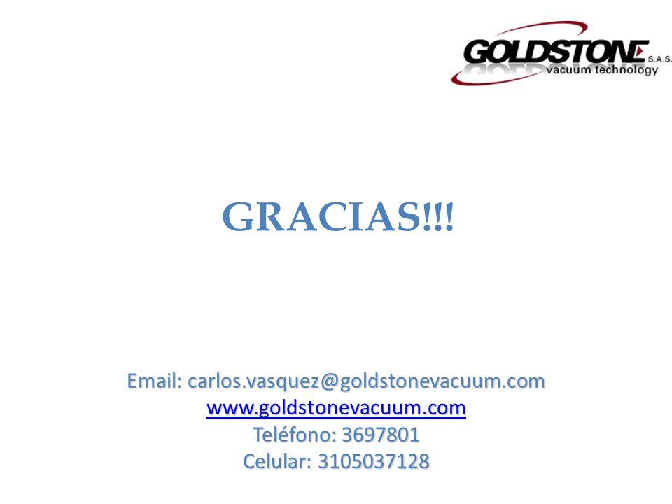 Email: carlos.vasquez@goldstonevacuum.com