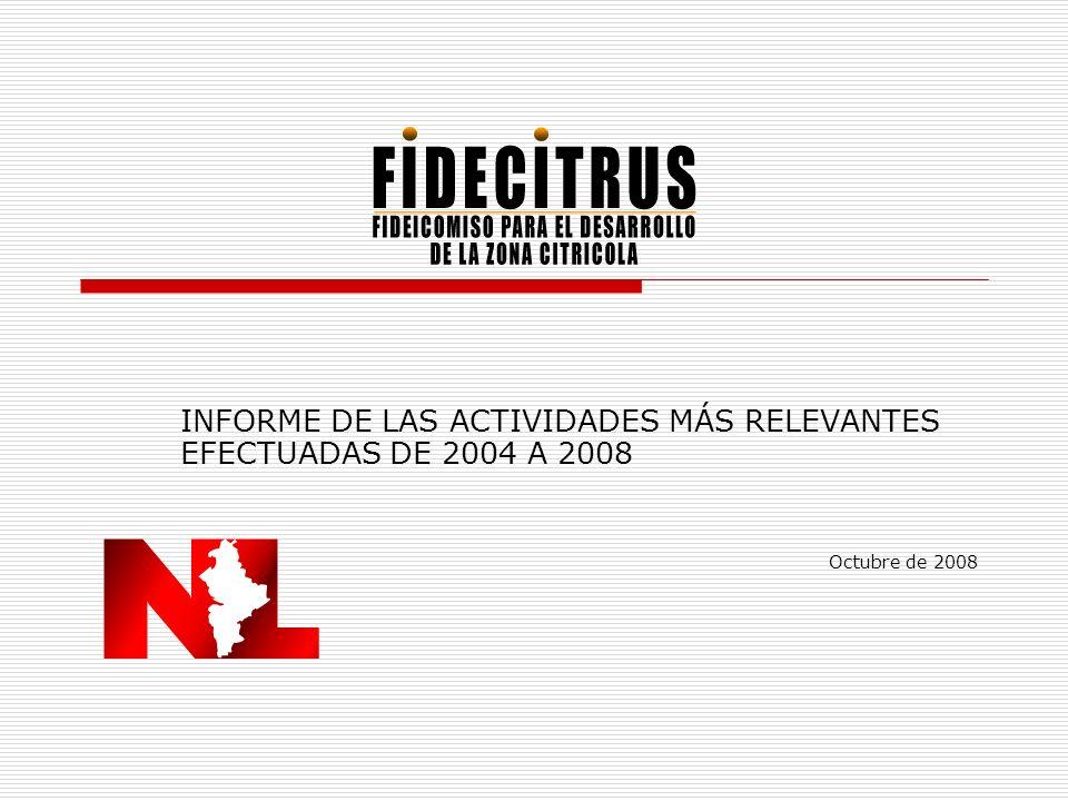 INFORME DE LAS ACTIVIDADES MÁS RELEVANTES EFECTUADAS DE 2004 A 2008