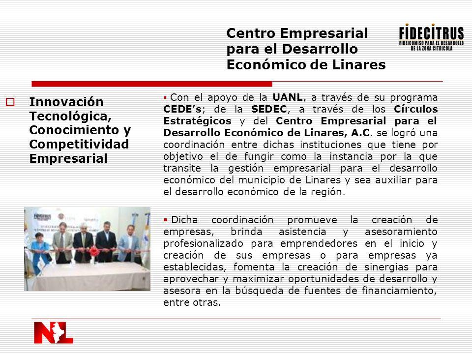 Centro Empresarial para el Desarrollo Económico de Linares