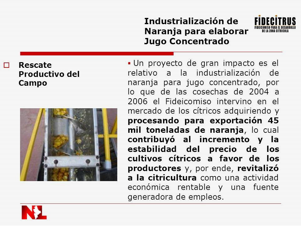 Industrialización de Naranja para elaborar Jugo Concentrado