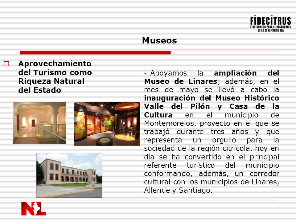 Museos Aprovechamiento del Turismo como Riqueza Natural del Estado