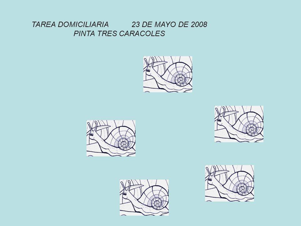 TAREA DOMICILIARIA 23 DE MAYO DE 2008
