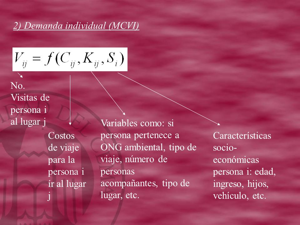 2) Demanda individual (MCVI)