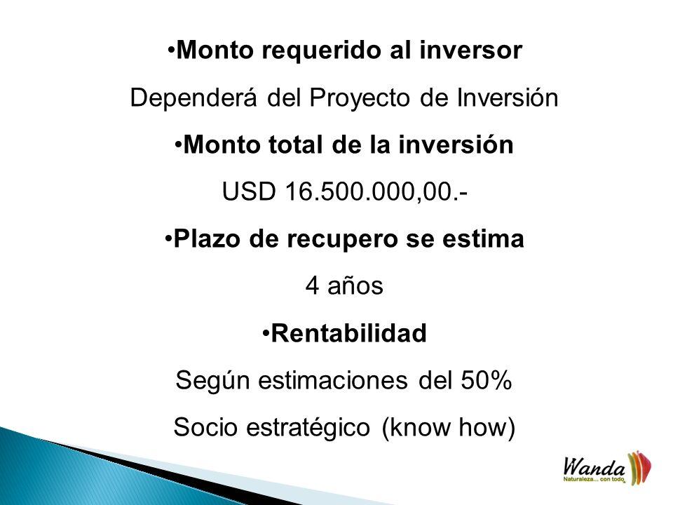 Monto requerido al inversor Dependerá del Proyecto de Inversión