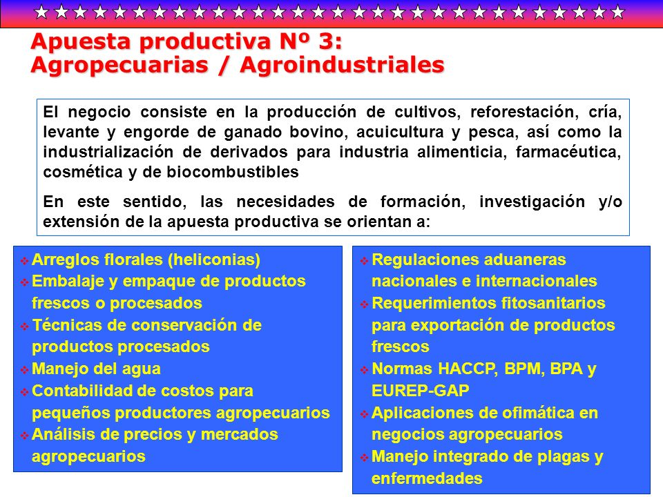 Apuesta productiva Nº 3: Agropecuarias / Agroindustriales