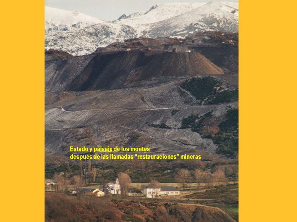 Estado y paisaje de los montes