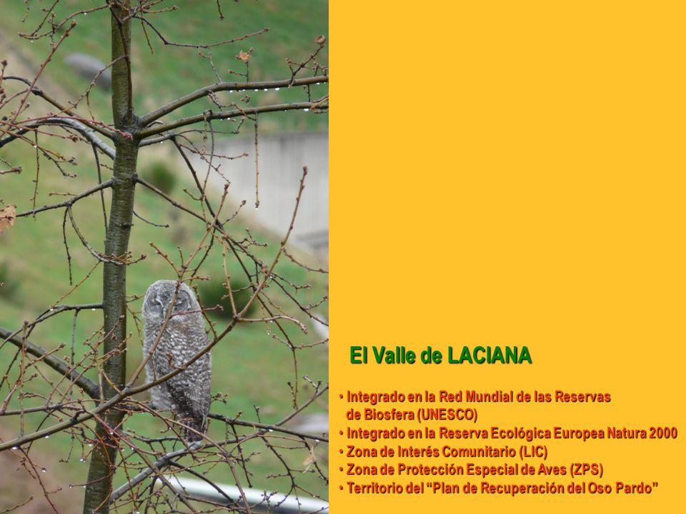 El Valle de LACIANA Integrado en la Red Mundial de las Reservas