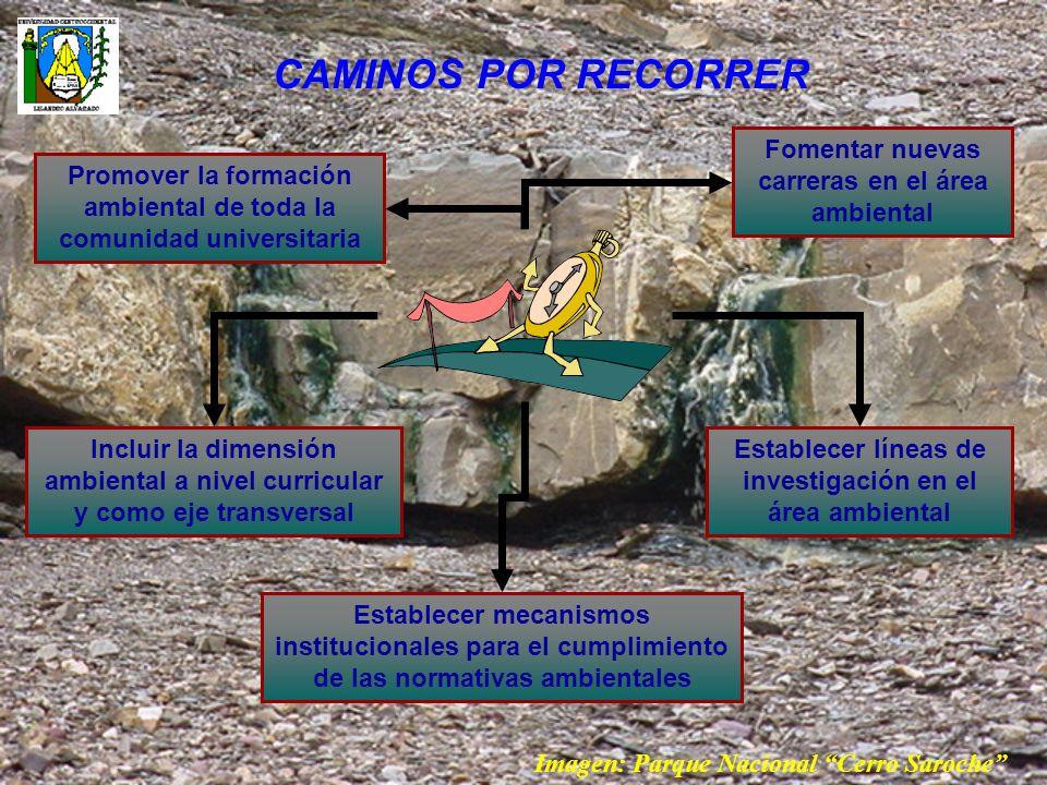CAMINOS POR RECORRER Fomentar nuevas carreras en el área ambiental