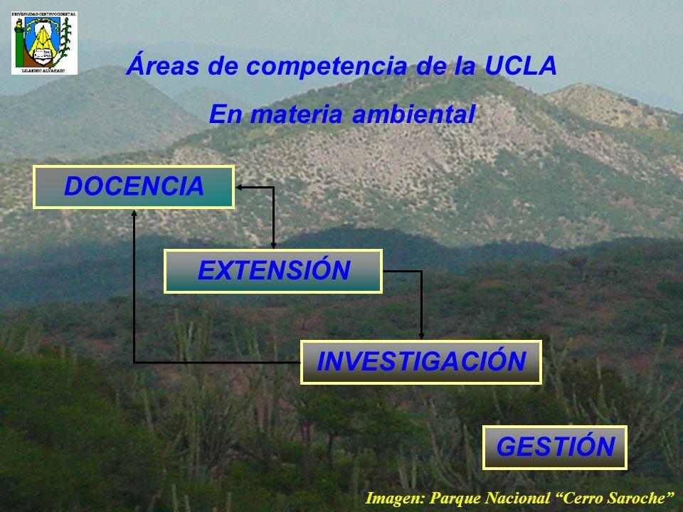 Áreas de competencia de la UCLA
