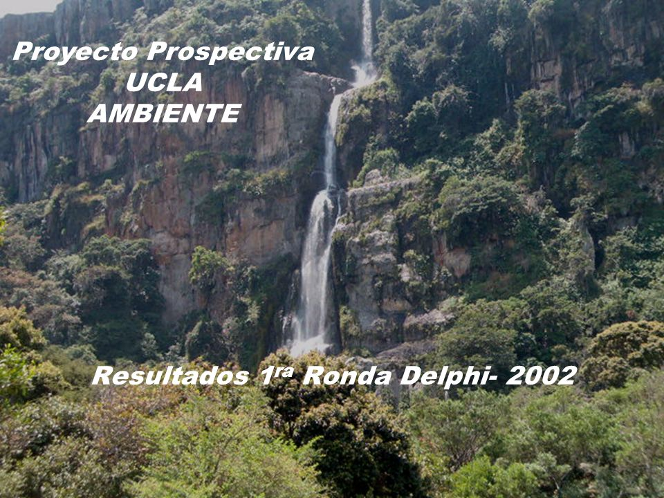 Resultados 1ra Ronda Delphi- 2002