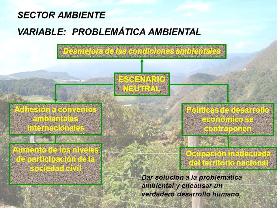 VARIABLE: PROBLEMÁTICA AMBIENTAL